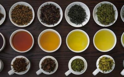 Quick Guide to Teas