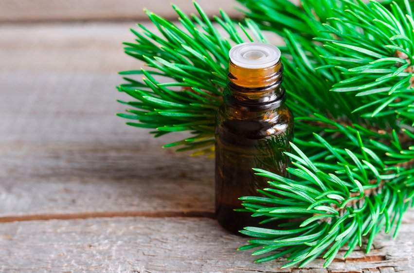 10 Important Essential Oils to Have On Hand